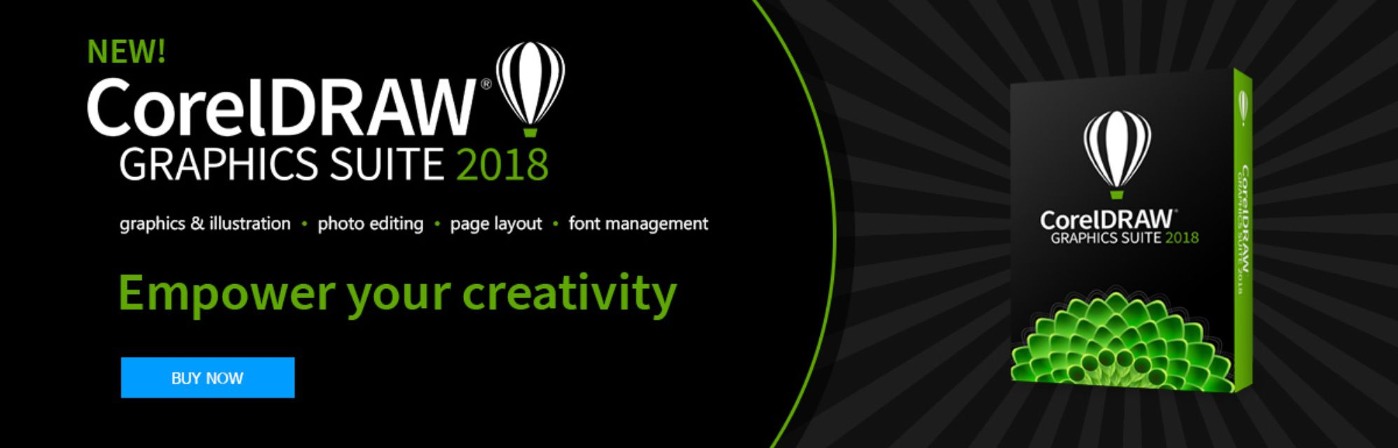 The 8 Best Logo Design Software To Use In 2019