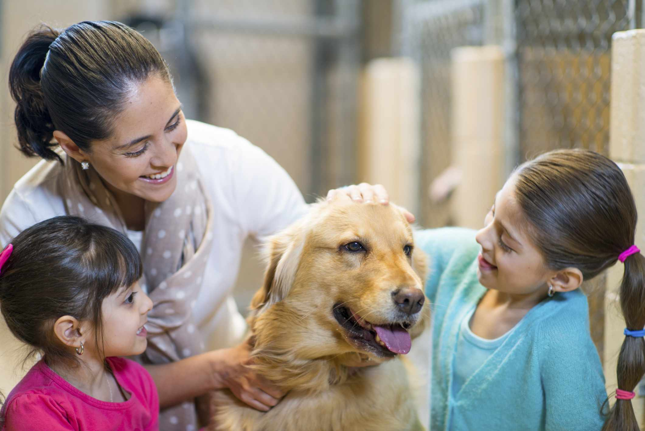 A family at the animal shelter.