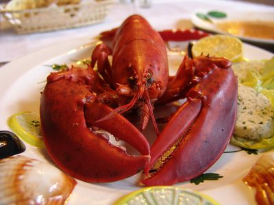 Fresh seafood prices often subject to market price