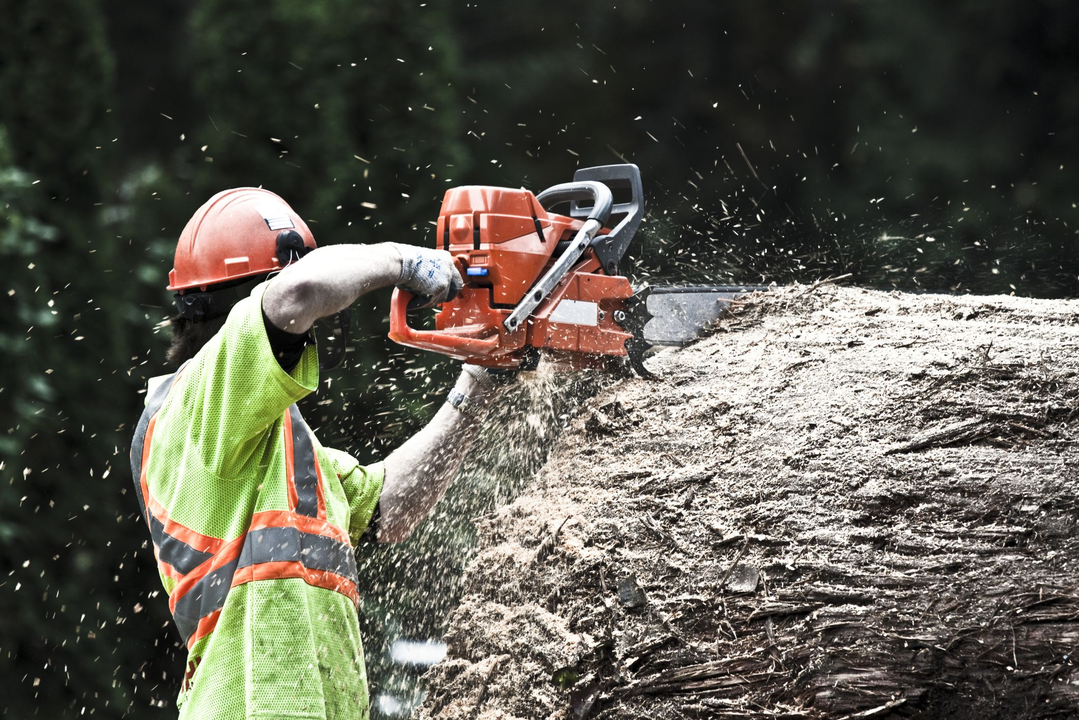 Stihl vs  Husqvarna Chainsaws: A Comparision
