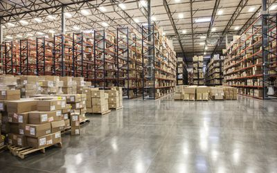 Inventory Management: Using the SAP System