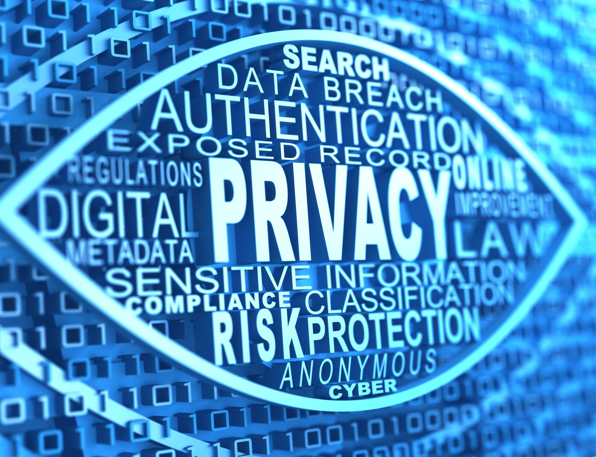 Cyber Liability Insurance Coverage For Data Breaches