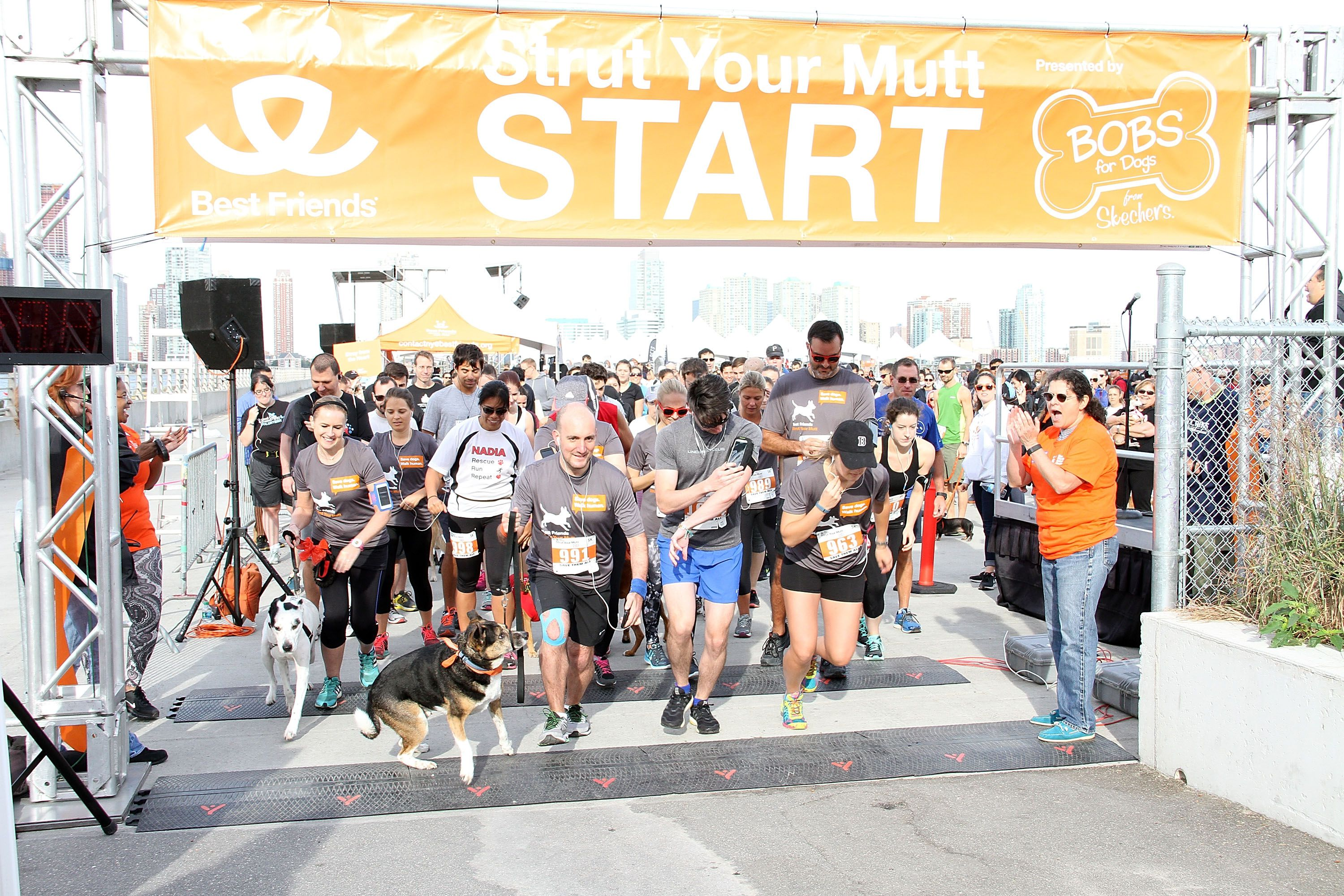 A Strut Your Mutt event, sponsored by Best Friends