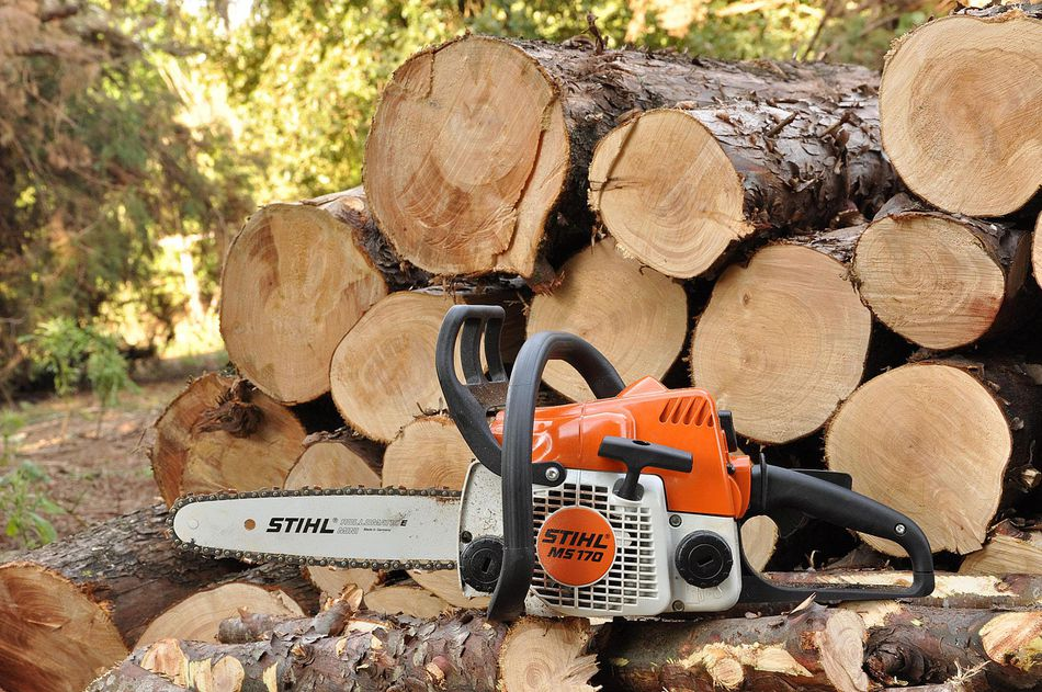 chainsaw and logs