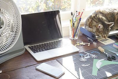 A cat laying in the sun on a home office desk holding a laptop and other work tools.