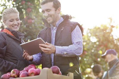 Smiling farmers using digital tablet in sunny apple orchard