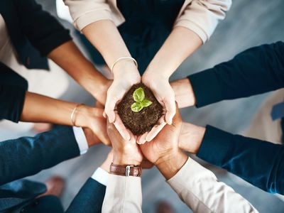 High angle shot of a group of business colleagues holding a budding plant growing out of soil in their hands.