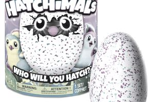 eBay hot toy Hatchimals