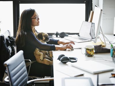 Businesswoman at workstation with dog on her lap