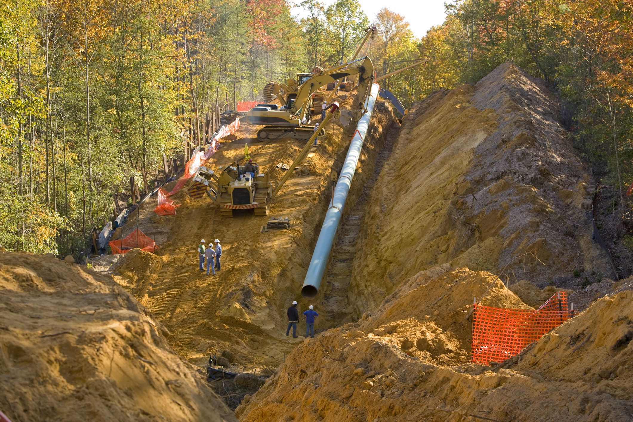 Pipeline being installed in forest