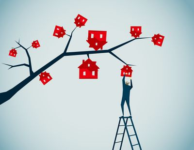 Illustration of a man picking a house off of a tree branch
