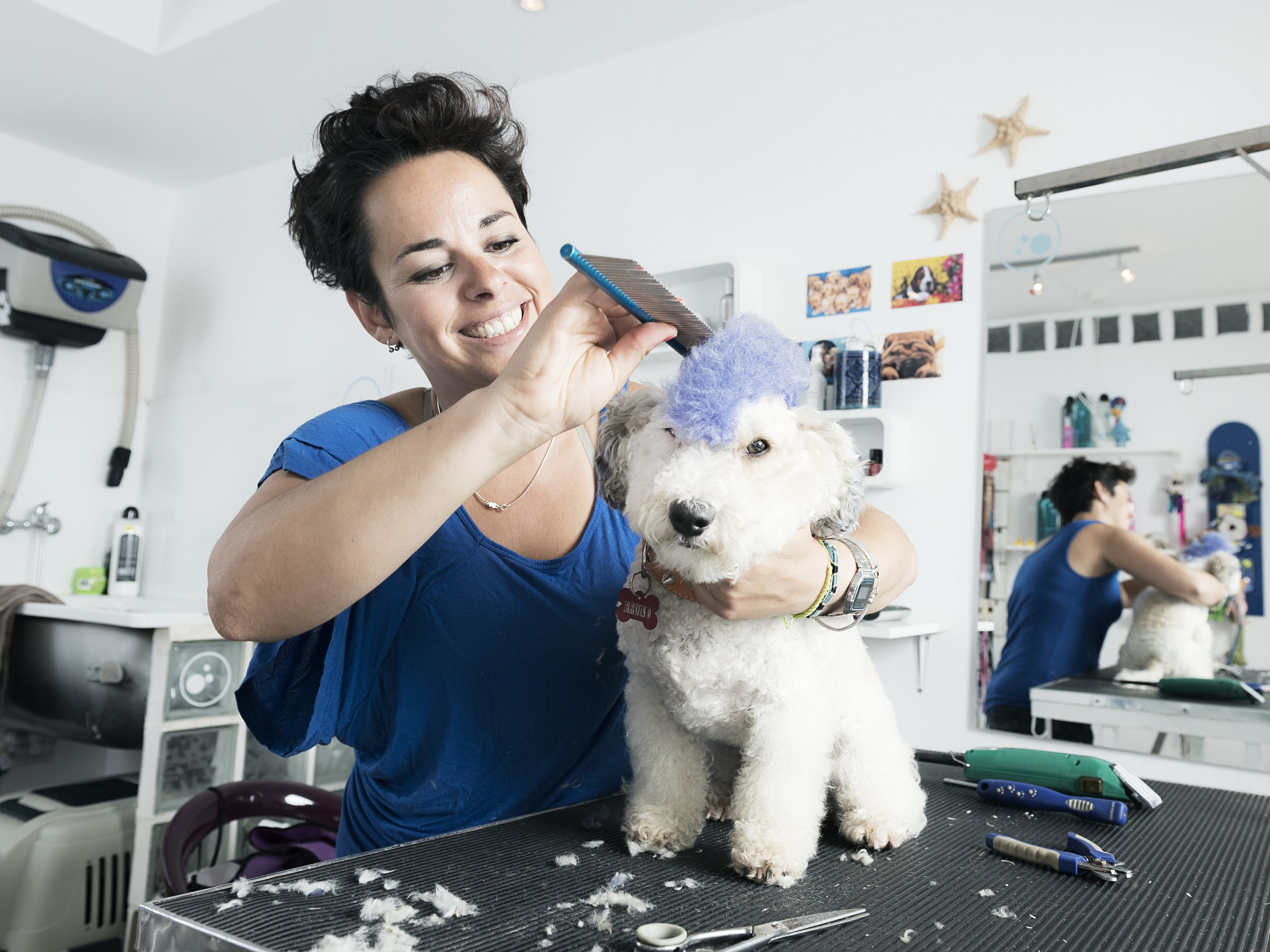 Pet Business Ideas for Animal Lovers