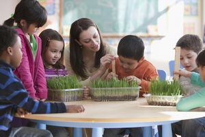 Teacher measuring plants with students in classroom