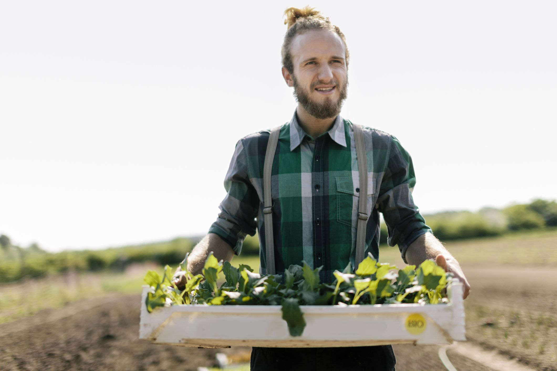 How to Get USDA Organic Certification
