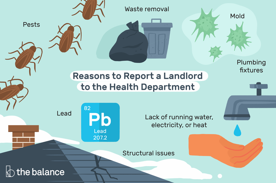 "Text reads: ""Reasons to report a landlord to the health department: Pests; Mold; Lead; Lack of running water, electricity, or heat; Plumbing fixtures; Waste removal; Structural issues."" Each issue has been illustrated."