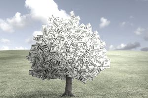 A tree made of money representing getting funding for your business.