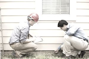 Picture of Rental Property Maintenance Tips to Prevent Pests