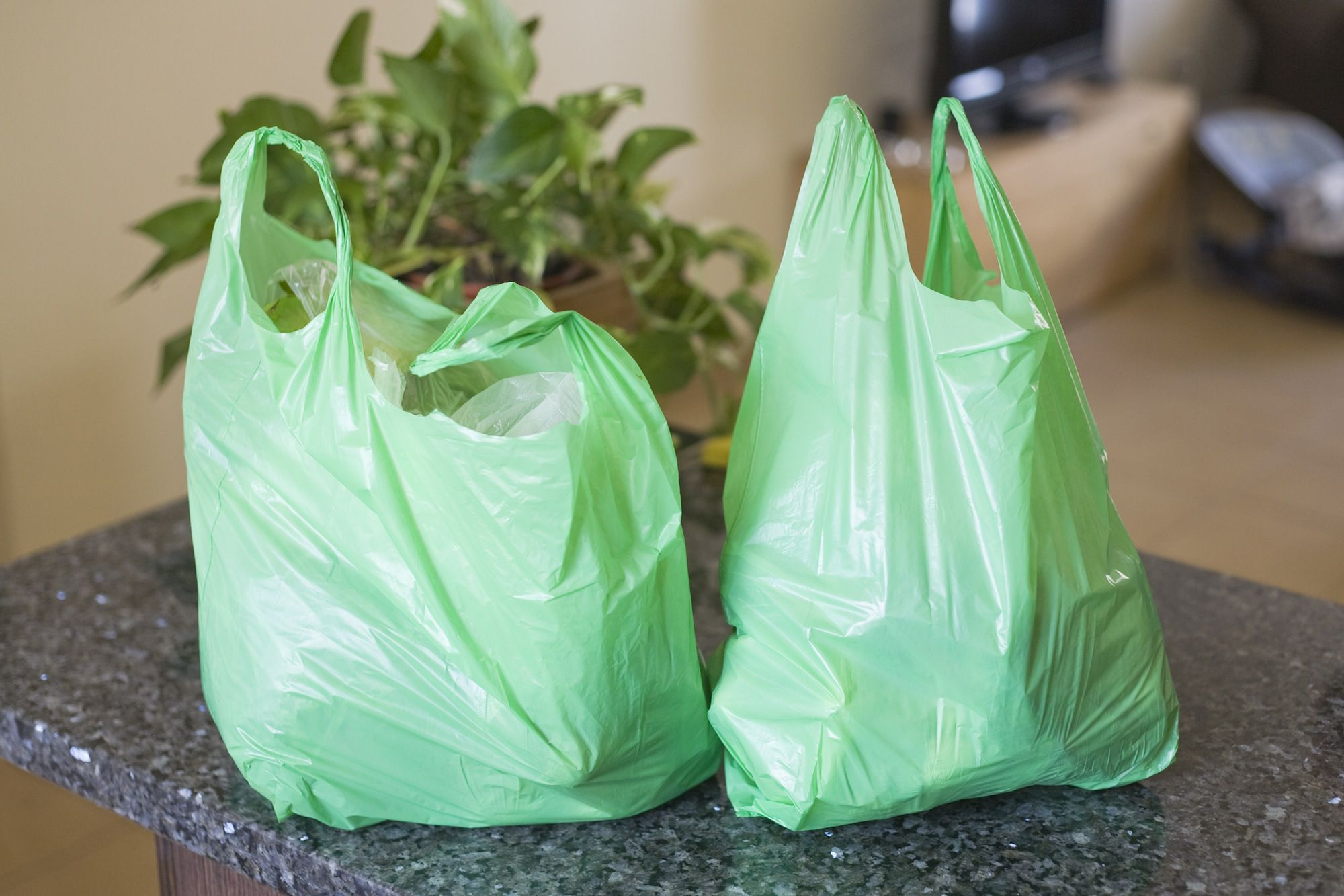The Plastic Bag Controversy After A Quarter Century