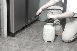 Exterminator spraying in kitchen