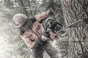 Man using chainsaw while cutting tree in forest.