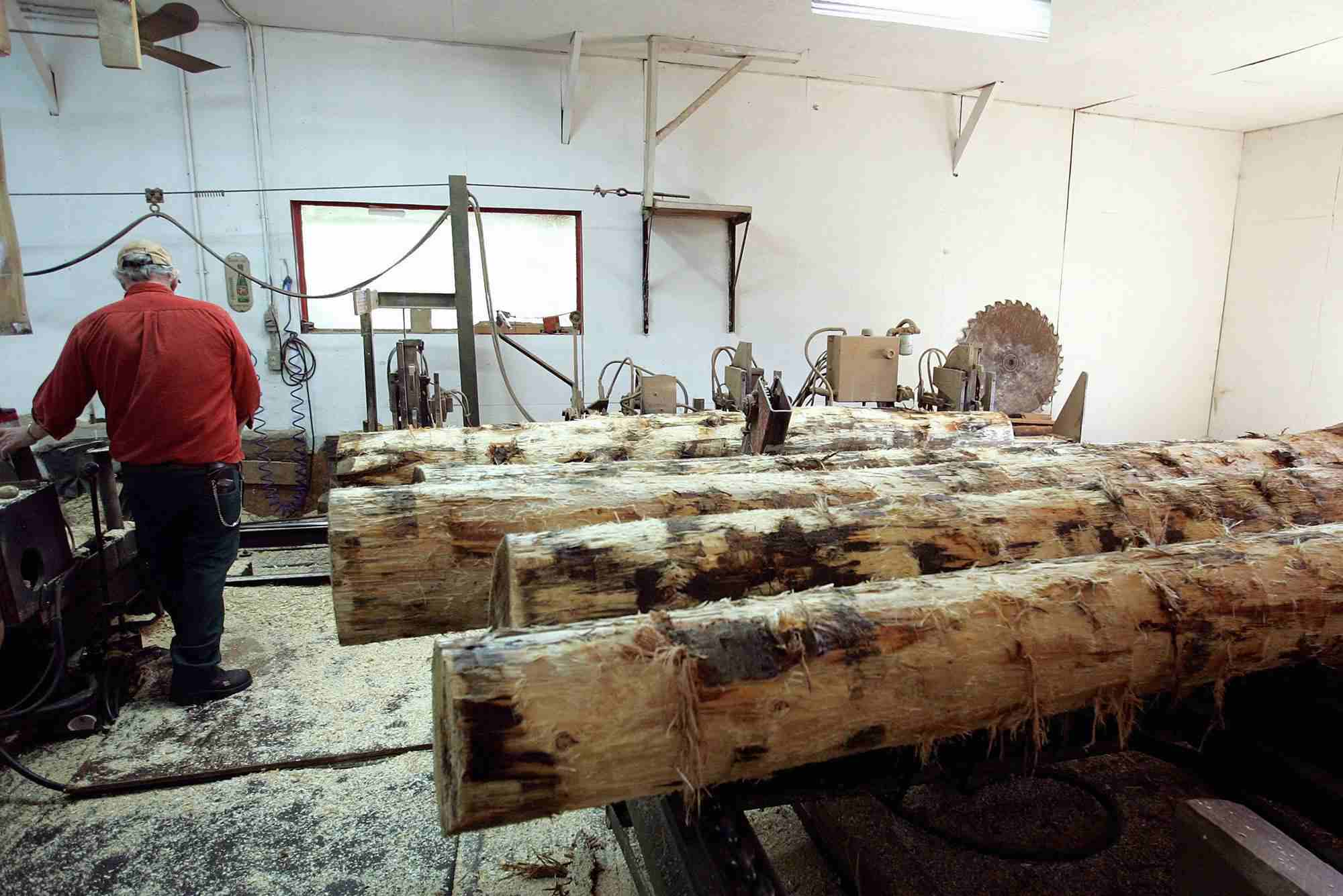 Worker at the Carson Sawmill preparing wood