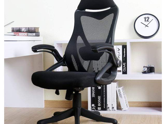The 8 Best Office Chairs For Back Pain