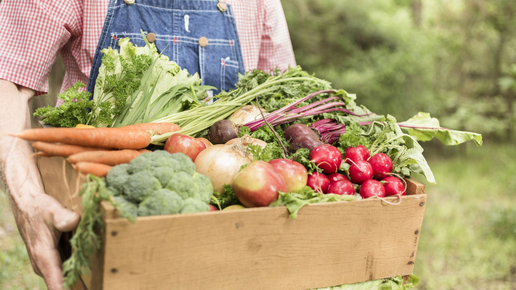 How Organic Farming Benefits the Environment