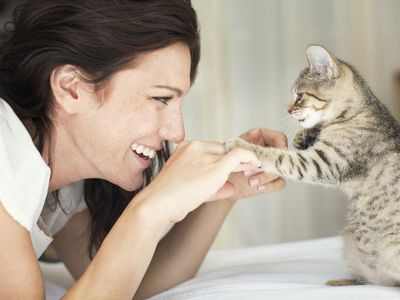 Woman playing with a small kitten