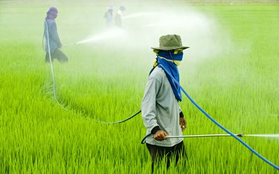 importance of organic chemistry in agriculture