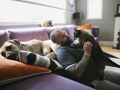 a man holding a cat while a dog lays on the couch behind him