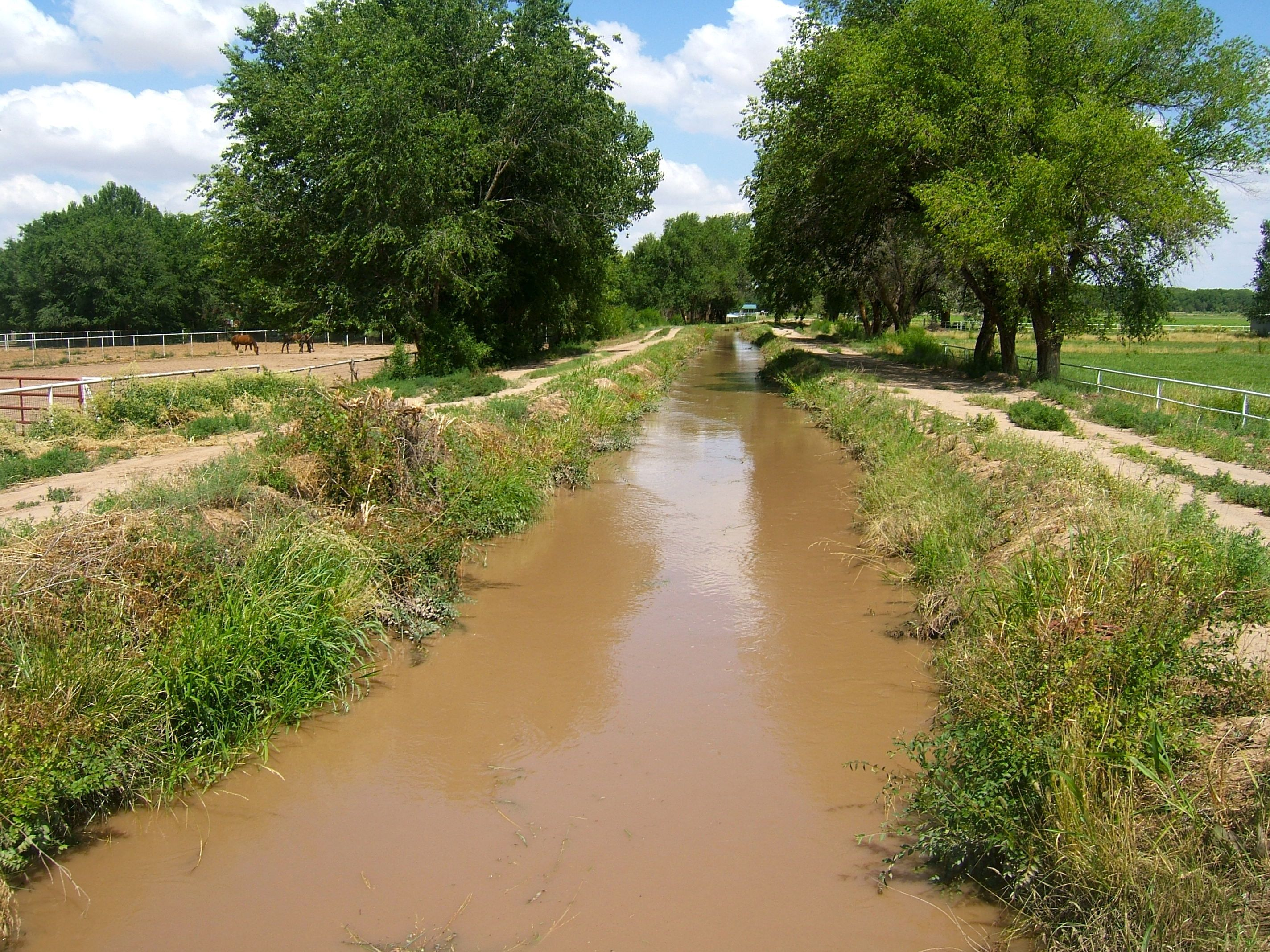 Ditch in Country