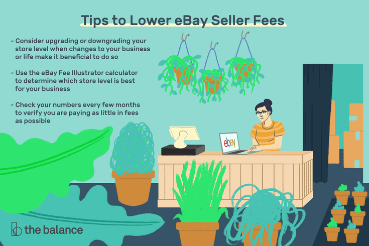 How To Lower Your Ebay Seller Fees For Maximum Profit