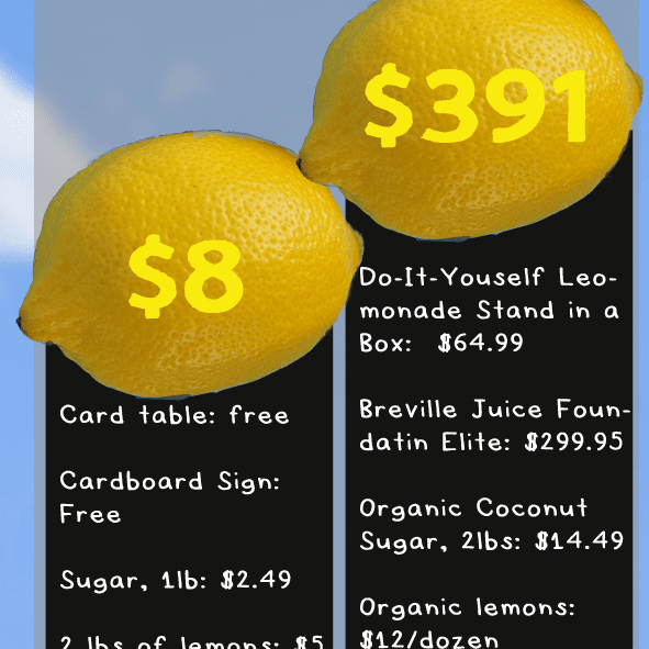 Economics Of The Lemonade Stand