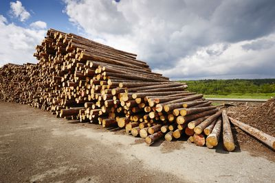 Stack of lumber waiting for a Lumber Accreditation Stamp