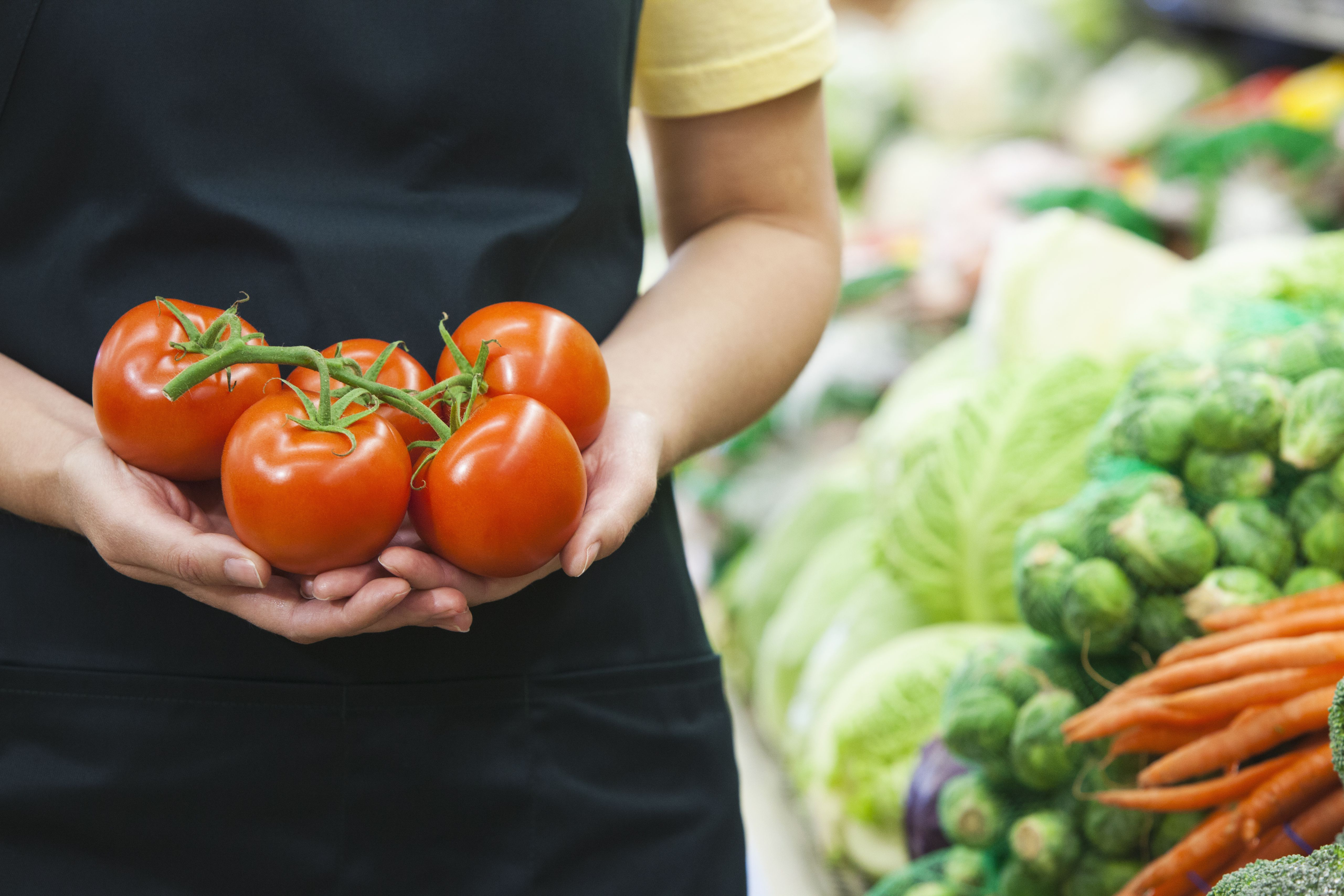 Caucasian worker holding tomatoes in grocery store